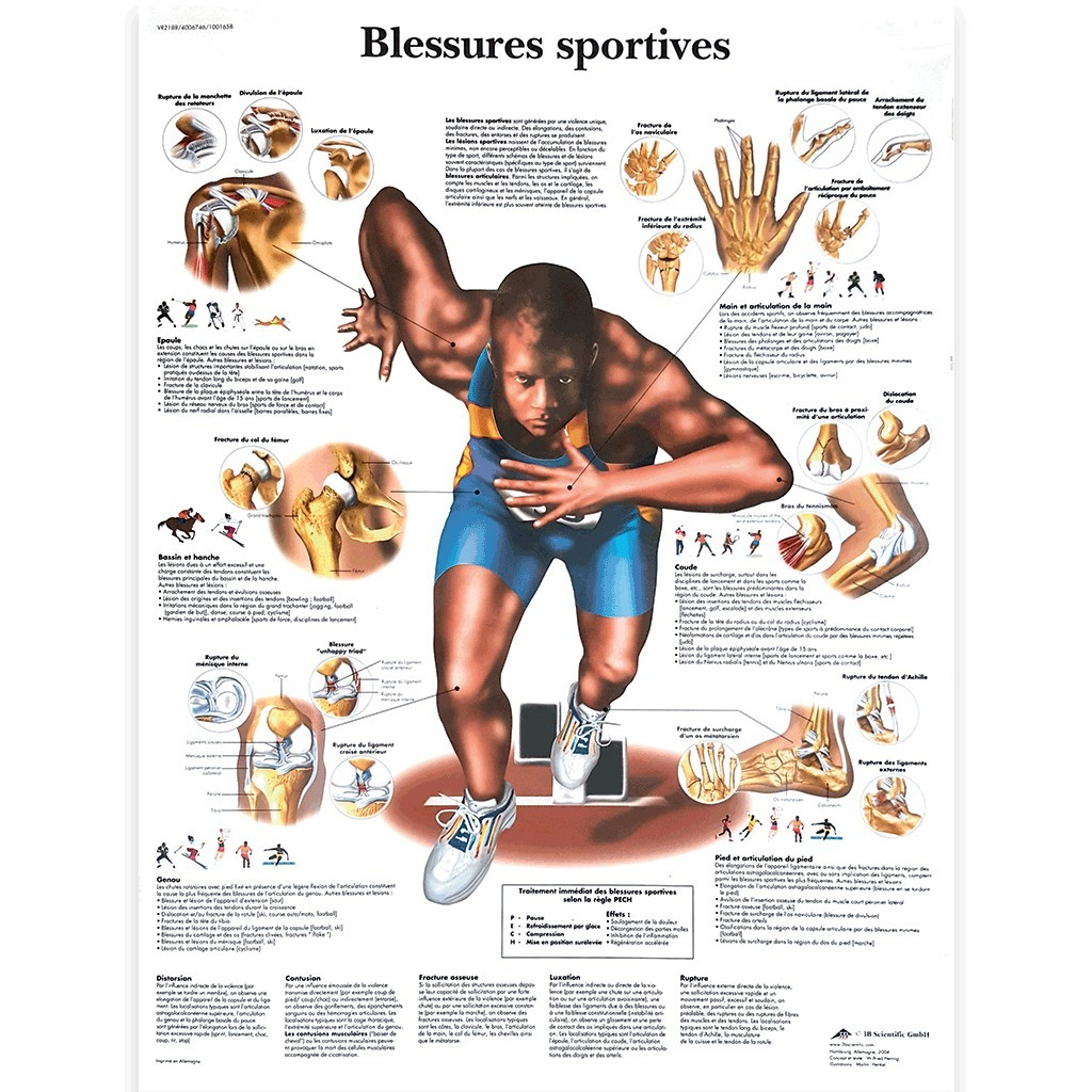 "Poster ""Blessures sportives"""